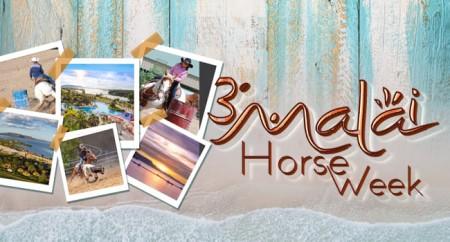 Terceiro Malai Horse Week